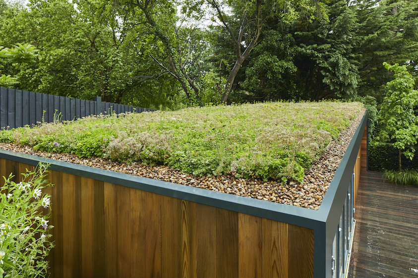 Garden office with green roof in Wimbledon