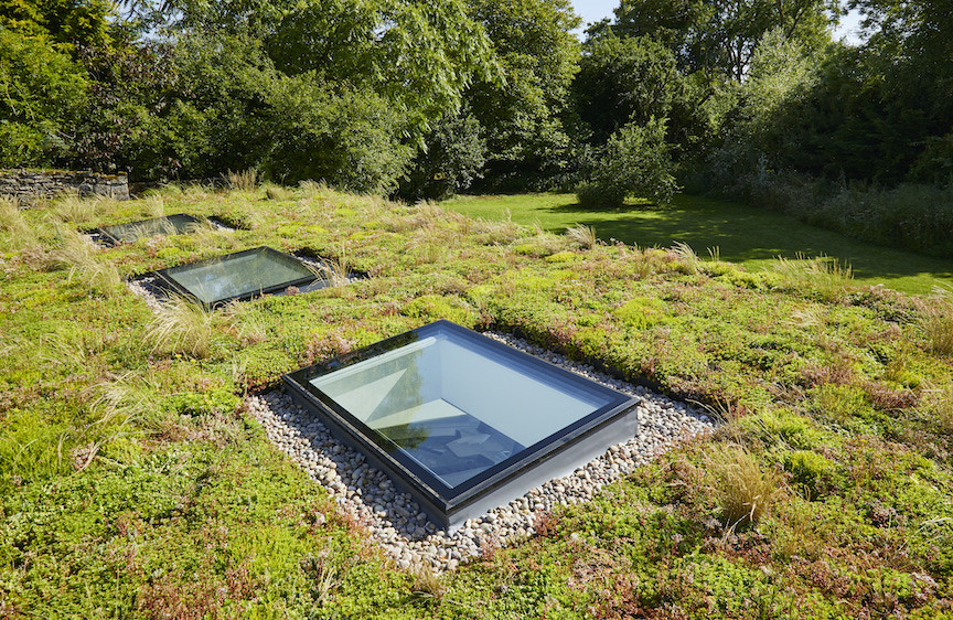 Garden room green roof and vellum windows